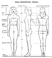 Human Proportions Chart Anatomy 101 Part One Proportions Webcomic Alliance