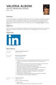 Digital Marketing Intern Resume samples