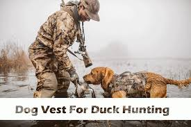 Dog Vest For Duck Hunting The Ultimate Guide To Dog Vests 2018