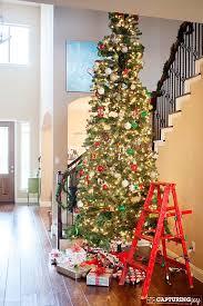 Shop Holiday Living 12ft Prelit Douglas Fir Artificial Christmas 12 Ft Fake Christmas Tree