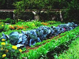 to garden types outdoor rooms vegetable gardening design a classic produce grow