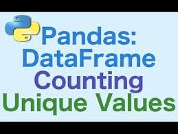 40 pandas dataframes counting and