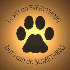 animal rescue quotes and sayings. Quotes About Animal Shelter Volunteers To Rescue And Sayings