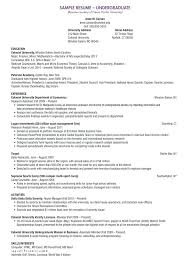 Best Example Of A Resume Excellent Resume Examples Resume Format
