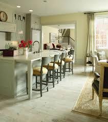 Martha Stewart Kitchen Designs Shocking Blue Kitchen Canisters Martha Stewart Decorating Ideas