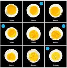 Egg Yolk Colour Chart Yolk Chart Food