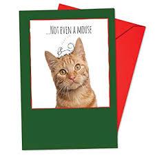Christmas Notecard Amazon Com Box Set Of 12 Feline Graffiti Christmas Notecard