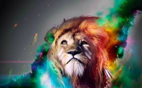 really cool lion 2560x1600