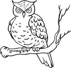 Owl Coloring Pages Printable Free Only