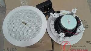 Loa Âm Trần Bluetooth | Loa âm trần không dây hiện đại - Sao xanh audio