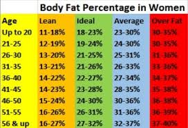 The Ideal Body Fat Percentage For Men Women How To Quickly