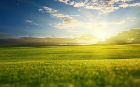 grass field sunrise.  Sunrise Grass Field Sunrise Wallpaper With R