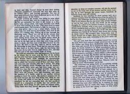 essay topics  1984 essay topics