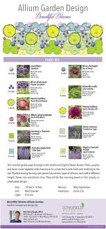 It Combines Four Types Of Allium Bulbs With Peonies, Salvia, Catmint ...