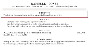 Objective For A Resume Example Examples Resume Career Objectives Delectable Carrier Objectives For Resume
