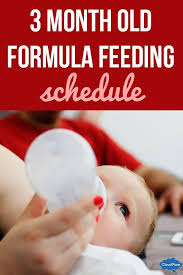 Baby Food Chart 3 Months 3 Month Old Formula Feeding Schedule 3 Month Old Schedule