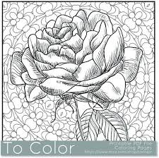 Small Picture 201 best Flower coloring pages images on Pinterest Coloring