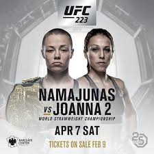 Image result for ufc 223