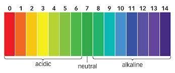 Universal Indicator Ph Color Chart Indicators Acids And Bases