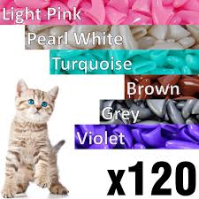 Cat Nail Cap Size Chart 120 Pcs Soft Cat Claw Caps For Cats Nail Claws 6x Colors 6x Adhesive Glue 6x Applicator Pet Cap Tips Cover Paws Grooming Soft Covers