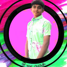 🦄 @mr__avadh - avadh patel - Tiktok profile