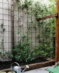 18 creative ways to use cattle pen panels homestead survival