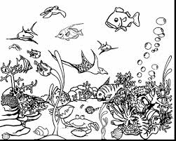Small Picture Under The Sea Coloring Pages For Kids Archives New Under The Sea