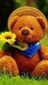 Cute Teddy Bear, HD mobile wallpaper ...