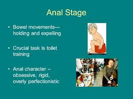 What is anal character