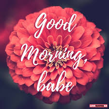 Good Morning Babe Quotes Best of 24 Of The Most Popular Good Morning Quotes For Your Love