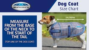 dog coats clothing