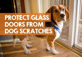 glass door from dog scratches