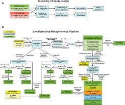 Deep Metagenomics Examines The Oral Microbiome During Dental