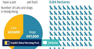 chinese new year goodies calories chart vegan dogs and cats in hong kong how diet lowers pets