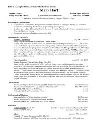 Resume Work Experience New Nanny Sample Unique Examples No Template