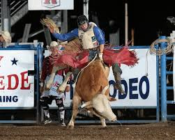 Pennsylvania Native takes Bull Riding Lead at Cody Stampede |