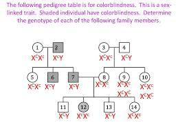 Genetics Practice Problems Pedigree Tables Answers Modern