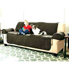 Dog friendly furniture Pet Friendly Pet Friendly Sofas Pet Friendly Sofa Dog Friendly Furniture Awesome Dog Friendly Furniture Images Pet Couches Pet Friendly Beampayco Pet Friendly Sofas Pet Friendly Furniture Fabric Cat For Couch