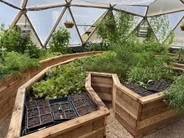 raised garden bed designs growing