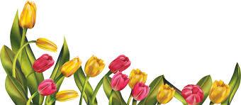 fl spring flowers 900 394
