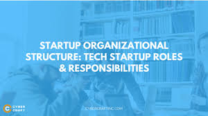 Startup Organizational Structure Tech Startup Roles