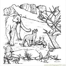 Small Picture West Texas Mountain Lion Coloring Page Free Mountain Coloring