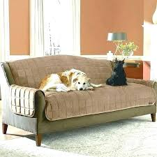 top furniture covers sofas. Plain Top Pet Sofa Covers With Straps Cover Best Furniture For Pets  Living Room   Intended Top Furniture Covers Sofas E