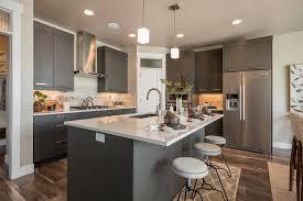 Top 34 Superb Hickory Cabinets Wood Kitchen Cabinet Handles Storage