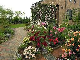 Small Picture 153 best ROSE GARDEN images on Pinterest Garden ideas Gardening