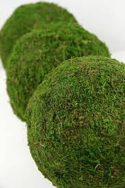 Moss Balls Wedding Decor Interesting Moss Balls 32 For Woodland Weddings Garden Decor Table Etsy
