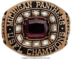 Image result for michigan panthers