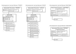 Аутсорсинг как инструмент повышения эффективности бизнес  Организационная структура Магазинов Привоз adidas Здоровье