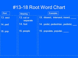 Latin Roots Chart 13 18 Root Word Chart 13 Sect 13 Cut Or Separate 14 Foot