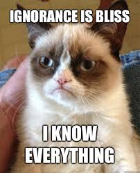 Ignorance Is Bliss Cat Meme - Cat Planet | Cat Planet via Relatably.com